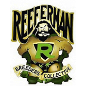 Reeferman Seeds - Normales