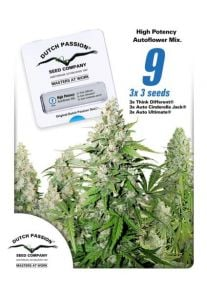 High Potency Mix Auto Feminised Seeds - 9