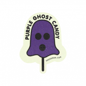 Purple Ghost Candy Feminised Seeds