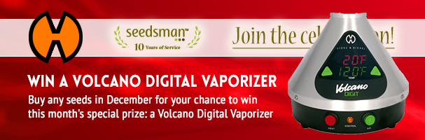 Win Volcano Digital Vaporizer